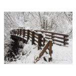 Puente de madera nevado tarjetas postales