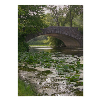Puente de Vilas en los WI de Madison Poster
