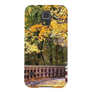 Puente del amarillo del otoño del bosque