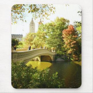Puente del arco, Central Park, verano tardío, NYC Tapetes De Raton