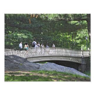 Puente del arco de Pinebank, Central Park, Nueva Y Fotografía