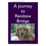 Puente del arco iris - condolencia para el perro felicitacion
