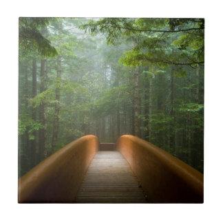 Puente del bosque de la secoya azulejo cuadrado pequeño
