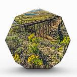 Puente del ferrocarril en la playa de Jalama