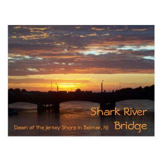 Puente del río del tiburón postales