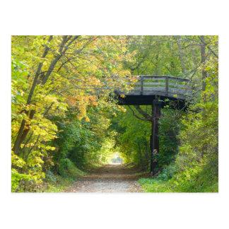 Puente del St de George en postal de la caída