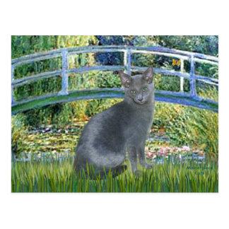 Puente - gato azul ruso 2 postal
