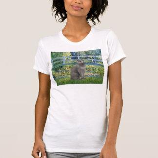 Puente - gato azul ruso camisetas