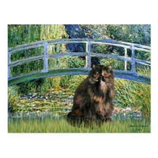 Puente - gato de calicó persa tarjeta postal