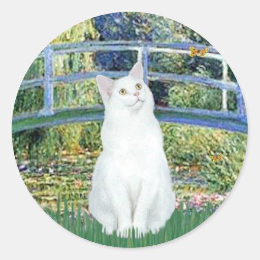 Puente - gato de pelo corto blanco pegatina redonda