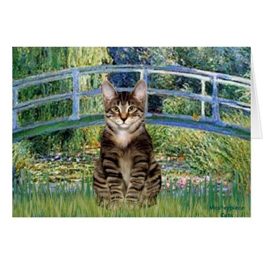 Puente - gato de tigre del Tabby 30 Tarjeta De Felicitación