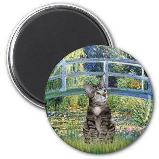 Puente - gato de tigre del Tabby 31 Imán De Nevera