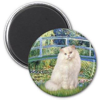 Puente - gato persa blanco iman de frigorífico