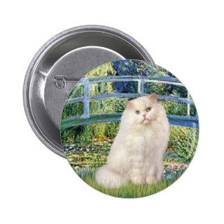 Puente - gato persa blanco pins
