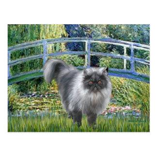 Puente - gato persa del humo azul postal