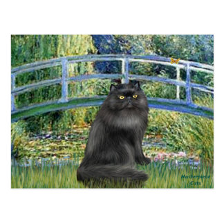 Puente - gato persa negro postal