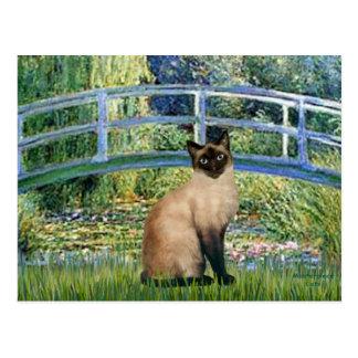 Puente - gato siamés del punto del sello tarjetas postales