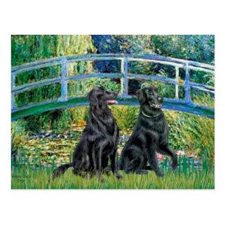 Puente - perro perdiguero revestido plano (dos) tarjeta postal