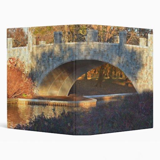 "Puente pintado carpeta 1"""