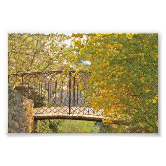 Puente romántico - impresión de la foto