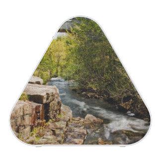 Puente sobre el río altavoz bluetooth