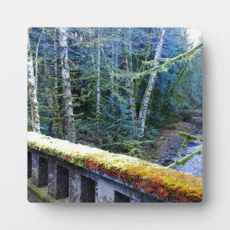 puentes cubiertos de musgo cerca de la casa de placas de madera