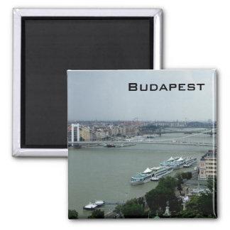 Puentes del Danubio Imán Cuadrado