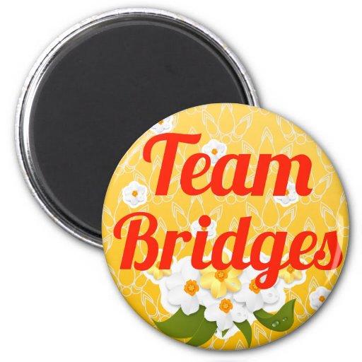 Puentes del equipo imán