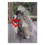 Puerco espín de la tarjeta del día de San Valentín