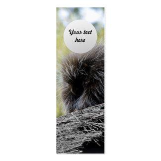 Puerco espín del árbol tarjetas de visita mini