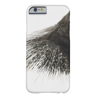 Puerco espín funda barely there iPhone 6