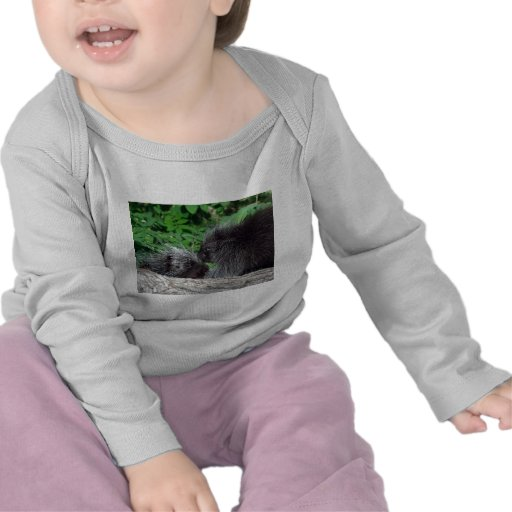 Puerco espín - mamá y bebé camiseta