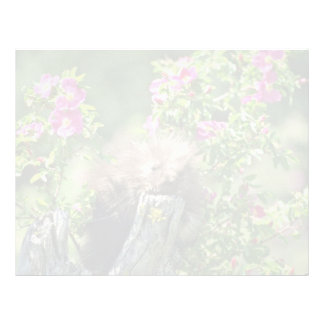 Puerco-joven en flores salvajes del rosa color de  membretes personalizados