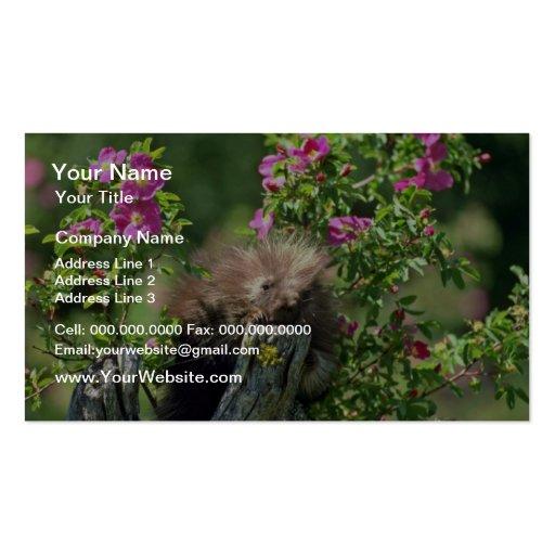 Puerco-joven en flores salvajes del rosa color de  tarjeta de visita