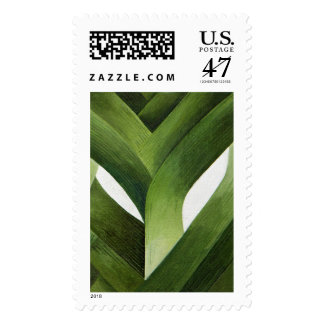 Puerros 2013 sello