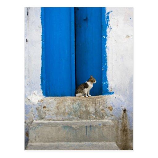 Puerta azul, Kairouan, Túnez, África Tarjetas Postales