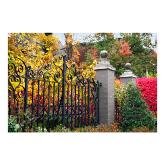 Puerta colorida con las hojas y los árboles en Lou Impresiones Fotográficas