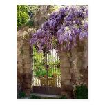 Puerta de jardín tarjeta postal