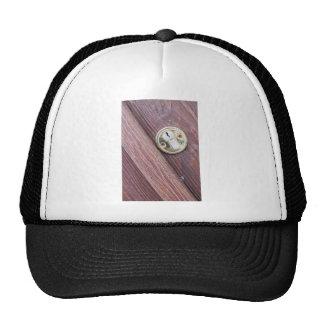 Puerta de madera con un latón del ojo de la gorros bordados