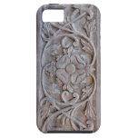 Puerta de madera tallada vieja Scrollwork iPhone 5 Cárcasas