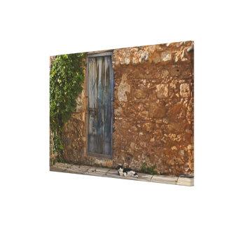 Puerta vieja y gato de reclinación impresión en lienzo estirada
