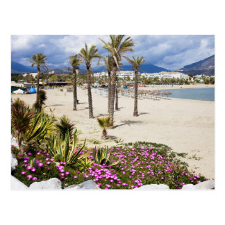 Puerto Banus Beach on Costa del Sol in Spain Postcard