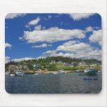 Puerto de Maine en verano Tapetes De Raton