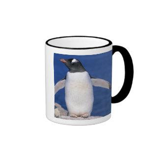 Puerto de Papua del Pygoscelis del pingüino de Taza De Dos Colores