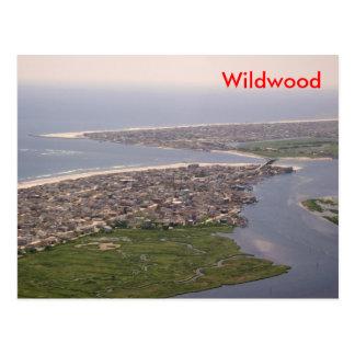 Puerto de piedra - Wildwood, NJ Tarjetas Postales