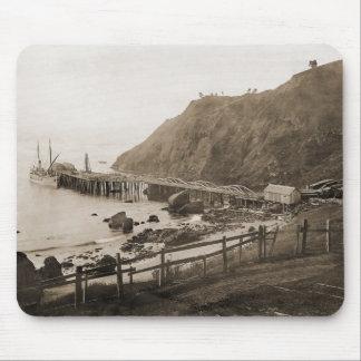 Puerto de puerto Orford circa 1910 Tapetes De Ratones