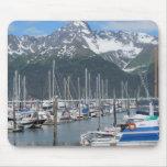 Puerto de Seward, Alaska Tapete De Ratón