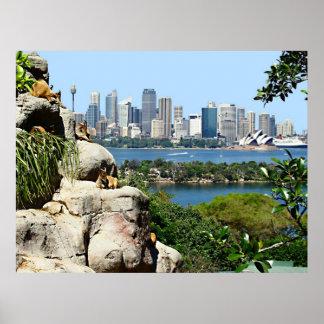 Puerto de Sydney del parque zoológico Impresiones