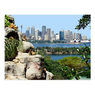 Puerto de Sydney del parque zoológico Tarjeta Postal