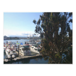 Puerto de Victoria Impresiones Fotograficas